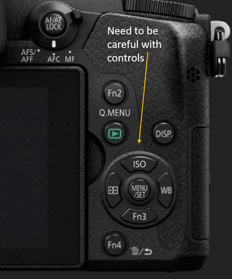 201802-controls-lumixgx8-iso.png